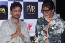 Irrfan Khan, Big B's clash at box office averted