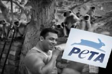PETA India condemns Salman Khan's acquittal in poaching case