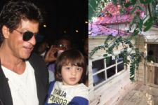 Shah Rukh Khan got an adorable TREE HOUSE made for his son AbRam Khan!