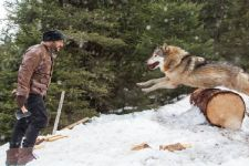 Death-Defying Action: Salman battles a pack of blood-thirsty wolves