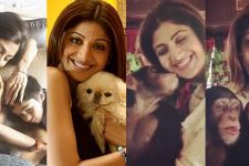 Shilpa Shetty becomes HERO of the Animals
