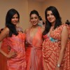 Priyanka, Anushka Anu Ranja & actress Pallavi Sharda in Nisha Sagar designs Evening Romance