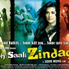 Poster of the movie Yeh Saali Zindagi