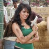 "Srilankan beauty Amenda on location of film ""Bin Bulaye Baarati"""