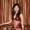 Celebs at Yuva Tigers Calendar Launch in Club Millennium