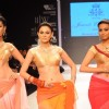 Models walk on the ramp for Jewels Emporium at IIJW 2011 show day 3. .