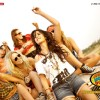 Katrina Kaif in the movie Mere Brother Ki Dulhan | Mere Brother Ki Dulhan Photo Gallery