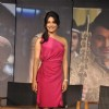 Priyanka Chopra at 'Agneepath' trailer launch event at JW.Mariott