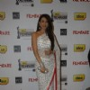 Karisma Kapur at 57th Idea Filmfare Awards 2011