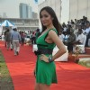 Sofia Hayat at Argentina VS Arc polo match. .