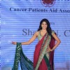 Pidilite CPAA fashion show