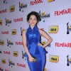 Tamanna at 59th !dea Filmfare Awards 2011 (South)