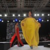 8th Edition of Seagram�s Blenders Pride Fashion Tour 2012
