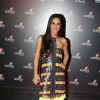 Tara Sharma at the 4th anniversary party of COLORS Channel