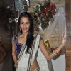 Model Sucheta Sharma-Harrison James' wedding bash