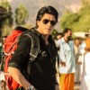 Shahrukh Khan | Chennai Express Photo Gallery