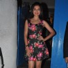 Gauahar Khan was seen at Dabboo Ratnani's 2014 Calendar launch