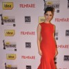 Tamanna Bhatia was at the 59th Idea Filmfare Awards 2013