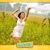 Rani Mukherjee wallpaper from the movie Dil Bole Hadippa
