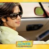 Wallpaper of Shahid Kapoor from the movie Dil Bole Hadippa | Dil Bole Hadippa Wallpapers