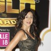 Teejay Sidhu at the Boroplus Zee Gold Awards 2014