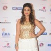 Parineeti Chopra was at International Indian Achiever's Award 2014