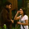 Gautam Gulati and Minissha Lamba at Bigg Boss 8
