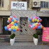 Launch of Melissa  In India