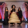 Sucheta Sharma James walks the ramp at Chrysalis Fashion Show
