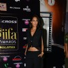 Lisa Haydon poses for the media at the Premier of Dil Dhadakne Do at IIFA 2015
