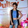 Trailer Launch of the film Wedding Pulav