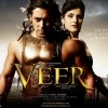 Poster of Veer movie with Salman and Lisa