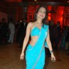 Amisha Patel at the Shilpa Shetty''s wedding reception