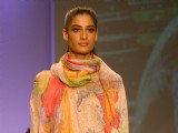 Wills Lifestyle India Fashion Week-Spring summer 2011 in New Delhi