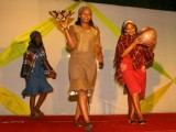 Fashion Show at the Charity African Gala of African Heads of Mission,in New Delhi