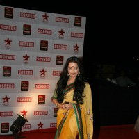 Celina Jaitley at 17th Annual Star Screen Awards 2011