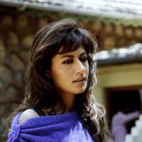 Chitrangda Singh in the movie Yeh Saali Zindagi