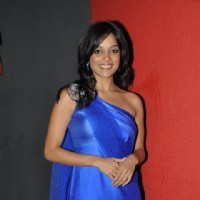 Nikita Anand at premiere of movie 'Gandhi To Hitler' at Cinemax