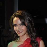 Shazahn Padamsee at Gold Gym 2012 calendar launch in Bandra, Mumbai