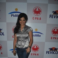Deepshika at Pidilite CPAA fashion show Pre-Event