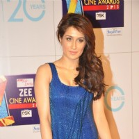 Sagarika Ghatge at Zee Cine Awards 2013