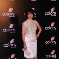 Meghna Malik was seen at the IAA Awards and COLORS Channel party