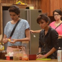 Contestants in Bigg Boss 8