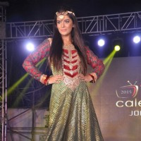 Pooja Gor walks the ramp at Telly Calendar Launch