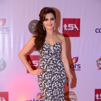 Monica Bedi at the Television Style Awards