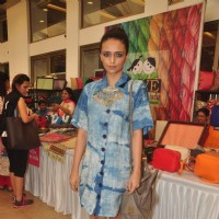 Roshni Chopra at Araaish 2015