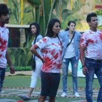 Bigg Boss 9 Nau: Day 33 - Contestants