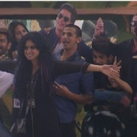 Bigg Boss 9 Nau: Day 67- Contestants Pose with Salman Shah Rukh Cut Out