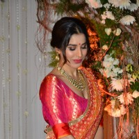 Sophie Choudry at Karan - Bipasha's Star Studded Wedding Reception