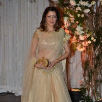 Aditi Gowitrikar at Karan - Bipasha's Star Studded Wedding Reception